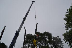 Abattage par démontage à la nacelle et grue en Pyrénées Atlantique 64 et Landes 40 991-2 - ECHEGARAY Ñaño élagage